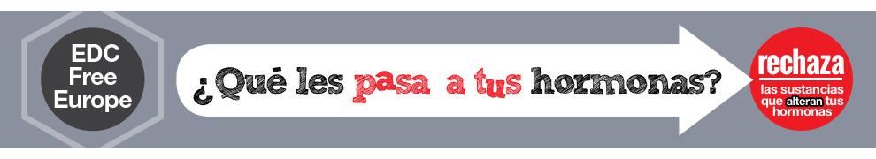 banner-es